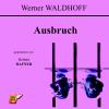 Hörbuch Cover: Ausbruch (Download)